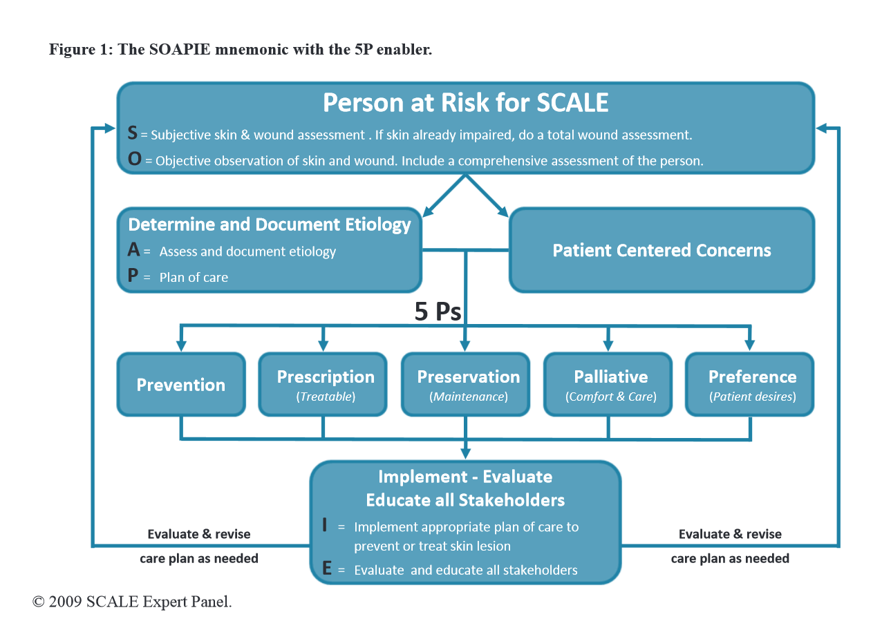 Person at Risk for SCALE - The SOAPIE mnemonic with 5P enabler