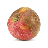 Photo of an intact but bruised red apple